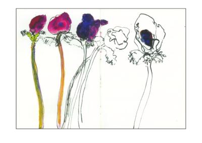 Anemones – Book No. 88